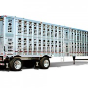 livestock-180x180